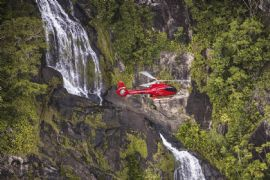 Rainforest Scenic Flight in a Helicopter