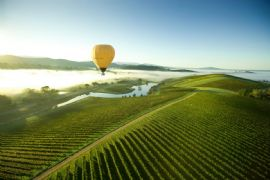 Ballooning the Yarra Valley, Child