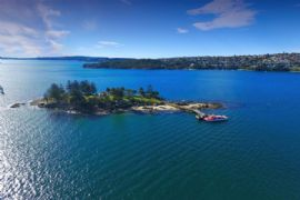 Seaplane Flight and Shark Island Tour for 2