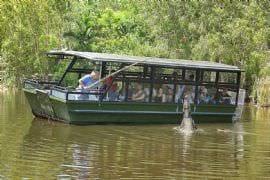 Crocodile Adventure with Transfers