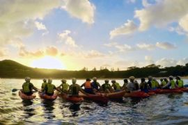 Sea Kayak and Dolphin Tour, Byron Bay Marine Park