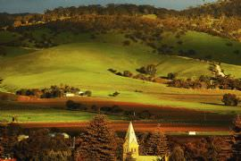 Barossa Valley 1/2 Day Tour for Two