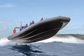Bondi Bash Extreme Boat Ride