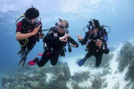 PADI Open Water Course, Gold Coast